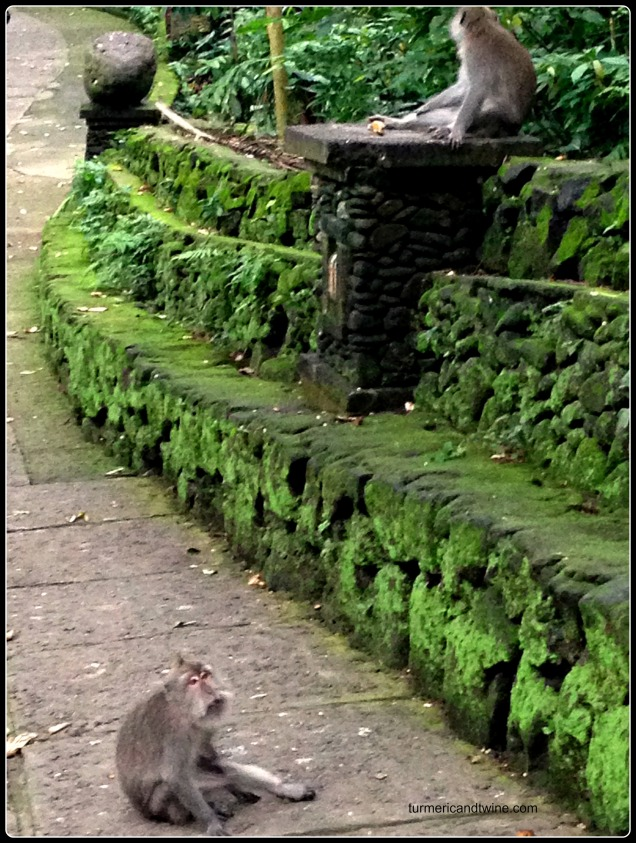 Sacred monkey forest Ubud