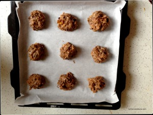 candied ginger cocoa nibs coconut cookie batter.jpg
