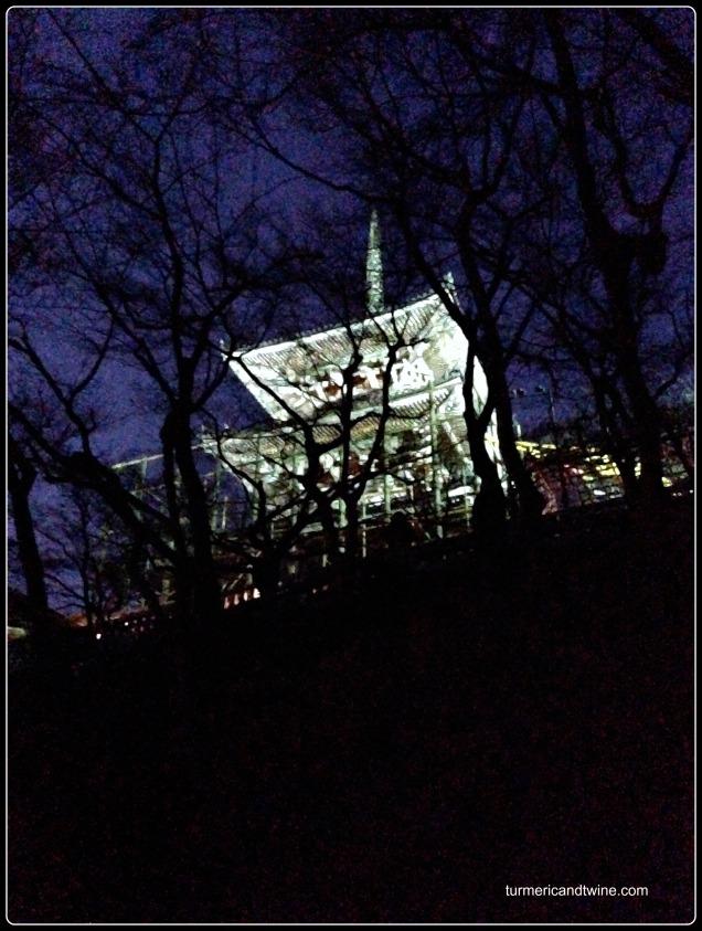 Kyoto shrine at night.jpg