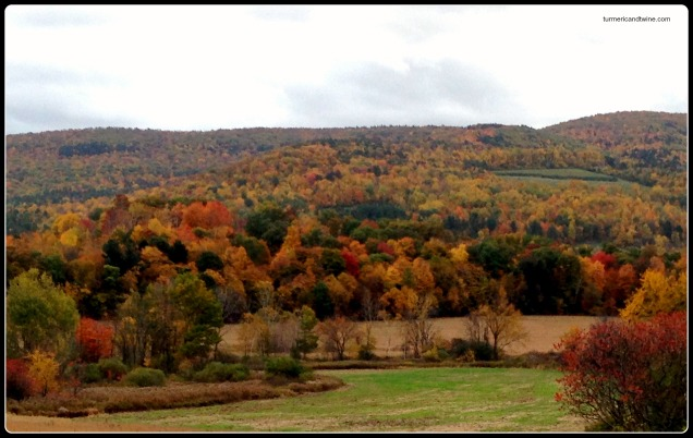 Autumn in the Berkshires 2