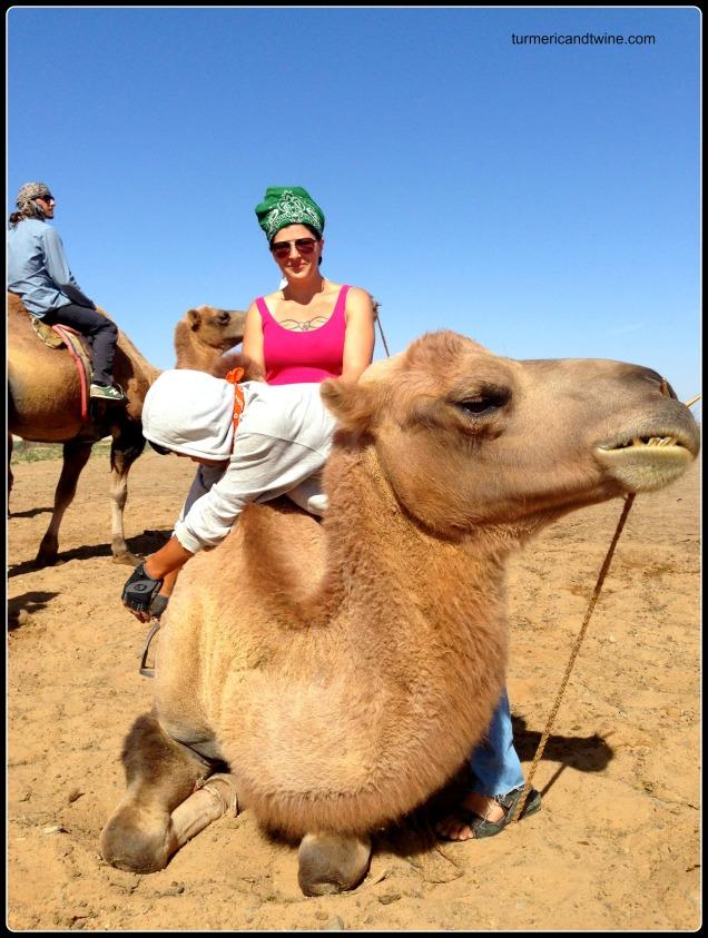 Camel riding, Gobi Desert, Mongolia