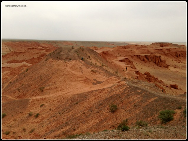 Red Cliffs, Mongolia 1
