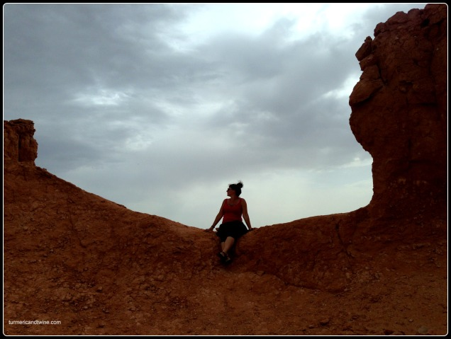 Sitting on the Red Cliffs, Mongolia